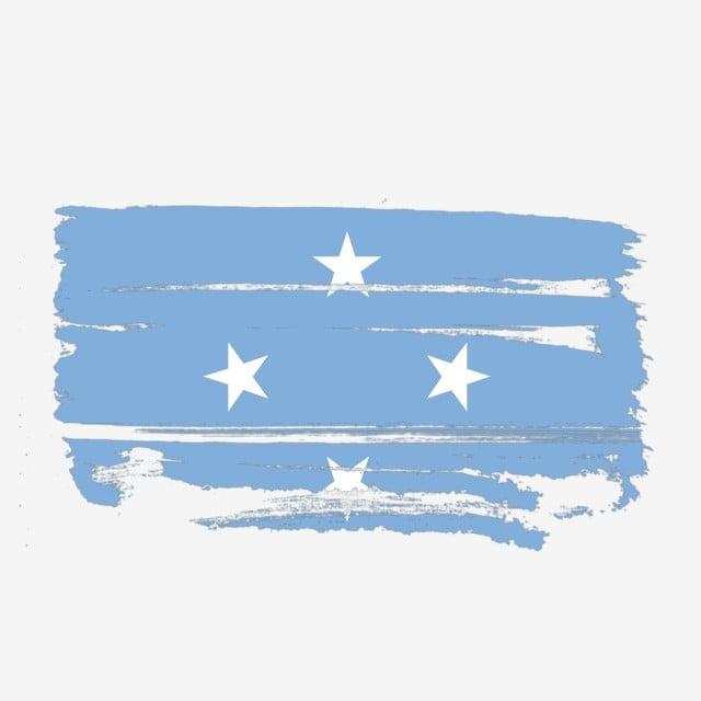 cờ Micronesia