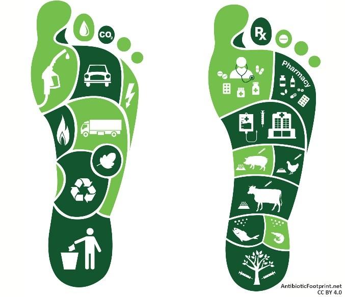 carbon footprint là gì